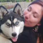 Roxy the Husky reunited with family
